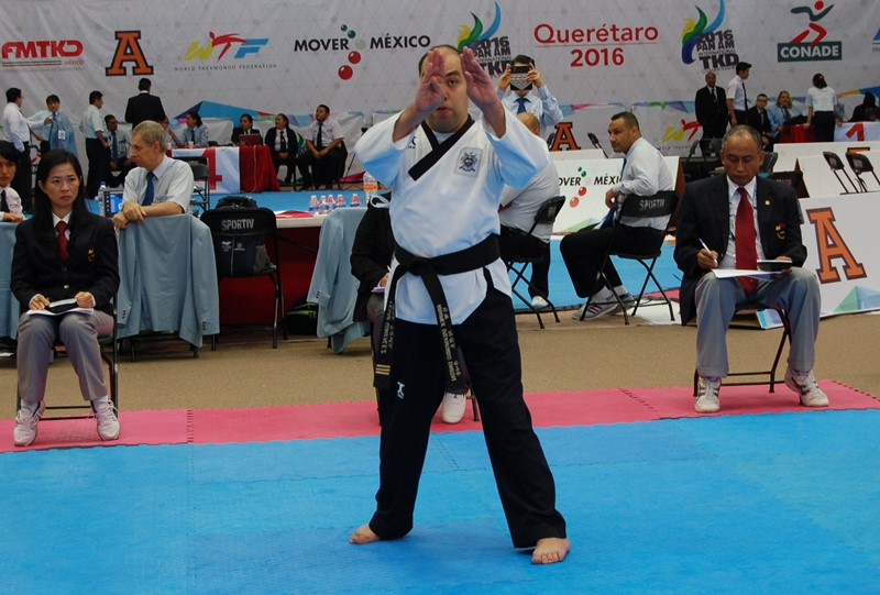 International recognition of the World Taekwondo Federation (WTF). What did this mean for the development of martial arts